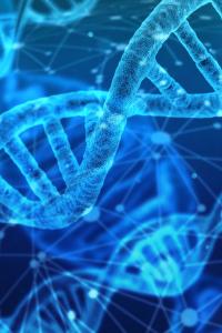 DNA and Epigenetics